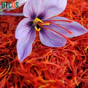 Nhụy Hoa Nghệ Tây Mojalal Saffron Hộp Vàng 1gr tốt không