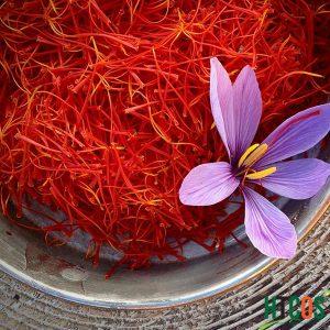 Nhụy Hoa Nghệ Tây Saffron Queen Saffron Organic Supper Negin 1gr tốt không