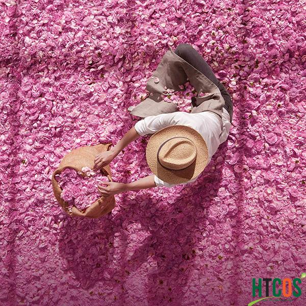 Nước Hoa Miss Dior Absolutely Blooming giá bao nhiêu